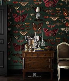 removable vintage wallpaper, butterflies and moths pattern, dark green background, unique graphics, Wallpaper Floor, Vinyl Wallpaper, Self Adhesive Wallpaper, Dark Green Wallpaper, Unique Wallpaper, Moody Wallpaper, Funky Wallpaper, Fish Wallpaper, Dark Green Background