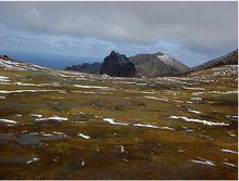 Tristan da Cunha - Wikipedia, Gough Island