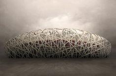 Birds-Nest by irene kung