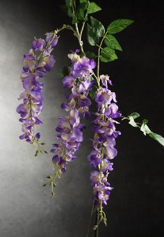 Branches with Lights LED Wisteria Flowers 32 in. Battery Operated