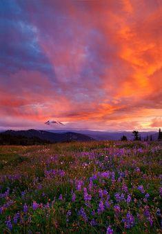 Dragon's Breath, Mt. Adams, Washington State