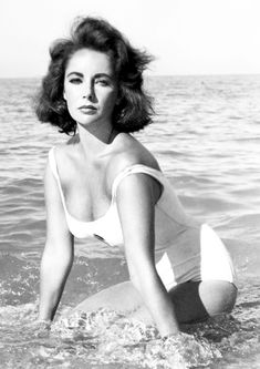 Elizabeth Taylor Monochrome Photo Print 11 Size - 210 x - x Classical Hollywood Cinema, Hollywood Divas, Tennessee Williams, Elizabeth Taylor, British American, Child Actresses, Universal Pictures, Father Of The Bride, Best Actress