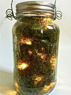 Fill Mason Jar full of moss and add twinkle lights for instant Fairy Garden