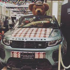 DAKS×ROVERが可愛すぎる!  #daks #daksテディベアフォトコンテスト #テディベア #teddybear #teddy #ted #くま #rover #かわいい #チェック #cute