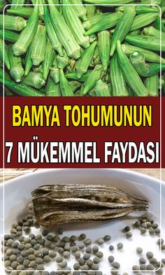 are the benefits of okra seed? How to use Okra seed? are the benefits of okra seed? How to use Okra seed?are the benefits of okra seed? How to use Okra seed? Healthy Sport, Healthy Life, Natural Medicine, Herbal Medicine, Herbal Remedies, Natural Remedies, Okra Benefits, Okra Seeds, Health And Wellness