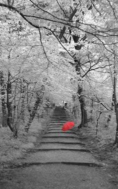 red umbrella strolling on a winters day...