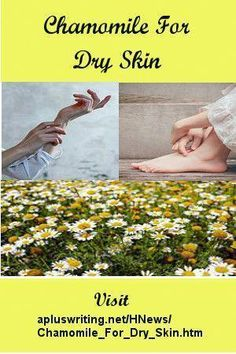 Chamomile is an excellent herb for natural skin care and hair care.  Add chamomile to your list of herbs for skin care. #BeautyTipsInUrdu #FacePeelMask Organic Skin Care, Natural Skin Care, Natural Health, Natural Face, Natural Oils, Skin Care Regimen, Skin Care Tips, Skin Care Routine For 20s, Skincare Routine