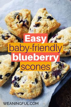 Healthy breakfast, lunch or dinner ideas for babies, toddlers and older kids are easy and quick to make if you know this basic scones recipe, that you can easily adapt to other ingredients not only blueberries. It's great finger food and nutritious too! Healthy Meals For Kids, Healthy Baking, Easy Healthy Recipes, Baby Food Recipes, Baby Meals, Kid Meals, Meals For One, Baby First Foods, Baby Finger Foods