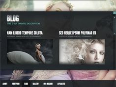 Best WordPress Themes of 2012