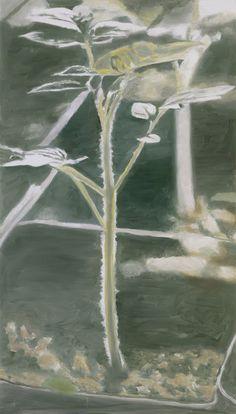 Luc Tuymans. Plant, 2003. 167,5 x 95,5 cm, oil on canvas