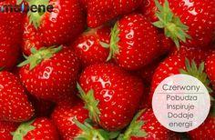 11 Vegan Desserts to Make This Spring Strawberry Banana Milkshake, Strawberry Seed, Strawberry Plants, Strawberry Shortcake, Strawberry Cobbler, White Strawberry, Strawberry Balsamic, Gazpacho, Desserts To Make
