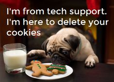 If your cookies need deleting, this is probably the best way to do it, with an office pug! #TechSupport #ITSupport #ITSupportHumour