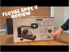 Aquarium Review. In this video and blog we talk about an aquarium we think is perfect for your betta fish! 5 gallons, lots of space to swim and agreat modern sleek style. The Fluval Spec V.