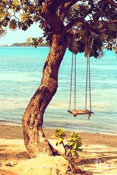 I have made my mind up that I will never be too old to swing!