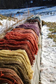 Vermont Wool's natural dye workshop at Farm and Wilderness, Vermont Madder root, onion, marigold, lac, indigo.
