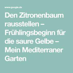 Pflanztaschen Fur Gemuse Google Suche Garten Blumen Obst Gemuse Pflanztasche Kartoffelanbau Obst Und Gemuse