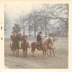 January 1967     Elvis decides everyone should have a horse. He buys seventeen, one for Priscilla, one for each member of his family and one for each memer of the inner circle. They are kept in the stables at Graceland and everybody rides the grounds, much to the delight of the fans who constantly surround his home.