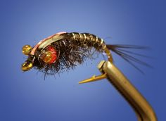 Fly Fish Food -- Fly Tying and Fly Fishing : The Chimera Hunts