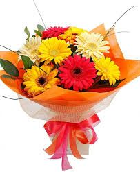 Send a gift of colour & cheer with this bright mixed gerbera flower bouquet. Gerberas are symbolic of cheerfulness - perfect for any occasion. Gerbera Bouquet, Gerbera Flower, Bouquets, Gerbera Daisies, Online Flower Delivery, Fresh Flower Delivery, Flower Bokeh, Send Flowers Online, Bouquet Delivery
