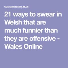21 ways to swear in Welsh that are much funnier than they are offensive - Wales Online
