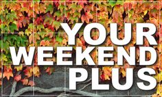 Your Weekend PLUS for 11/10 -11/16 http://www.chicagosuburbanfamily.com/your-weekend-plus-for-1110-1116/