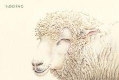 嬉しい羊君 Sheep, Creatures, Drawings, Illustration, Animals, Painting, Sketches, Animales, Animaux