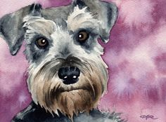 MINIATURE SCHNAUZER Dog Signed Art Print by Artist by k9artgallery WATERCOLOR