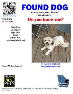 Picture Lost Found Walton Co Losing A Dog Dogs Lost