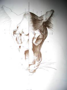 Lionhead_front