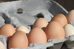 about the washing of chicken eggs