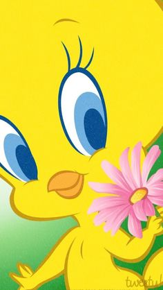 Risultati immagini per fond d écran hd animaux Cute Cartoon Pictures, Bird Pictures, Cartoon Pics, Cartoon Characters, Cellphone Wallpaper, Iphone Wallpaper, Tweety Bird Drawing, Baby Doll Picture, Tweety Bird Quotes