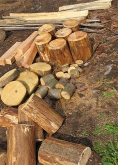 A variety of logs for construction!