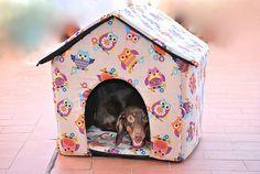 Casa perro Buhos nº2 49x53x44