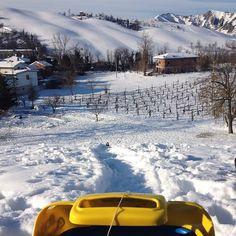 Iniziamo il lunedì mattina in discesa? Neve sulle colline di Modena - Instagram di fotofolia