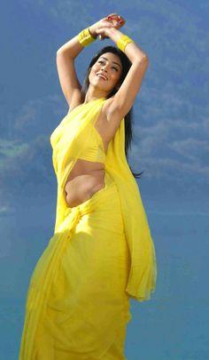 shriya-saran-hot-pics-in-saree-1