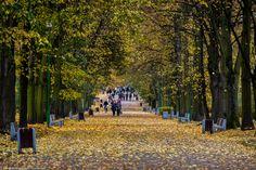 Jesienny spacer :) #jesień #park fot. Dawid Gromadzki