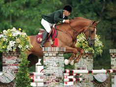 Baloubet du Rouet - The Stallion Company - is that a hackamore?