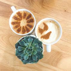 Reposting @liveoutinspiration: isn't this latte art the cutest?! ☀️☕️ just got back from spending spring break in Charleston, SC. Be on the lookout for a post soon all about things to do and places to go there, including the coffee shop where I got these!! • • • • • #coffee #coffeetime #coffeeshop #coffeetable #coffeelover #butfirstcoffee #productivity #inspiration #motivationmonday #bloggers #bloggerlife #blog #springbreak #springbreak2018 #succulents #vanillalatte #latteart #lattedesign…