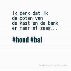 Ik denk dat ik de poten van de kast en de bank er maar af zaag. #hond #bal #huisdieren #humor #lol #herkenning