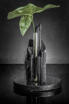 A linha Fragmentos do Paraíso cria objetos de natureza experimental, buscando uma honestidade crua e orgânica, contrastando com o ambiente urbano. As peças são feitas a partir de materiais brutos, que ganham uma delicadeza através do processo manual de fabricação. Uma excentricidade quase surreal.