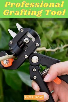 Garden Projects, Garden Tools, Grafting Plants, Pruning Tools, Vegetable Garden Design, Garden Design Plans, Organic Gardening Tips, Small Trees, Lawn And Garden