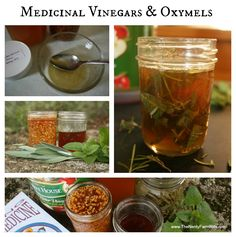 How to Make Medicinal Vinegars & Oxymels (sweet & sour herbal syrups)