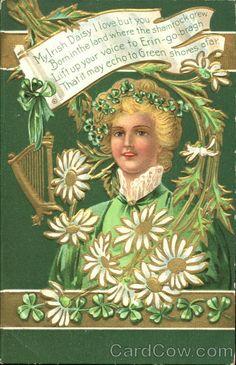 Limerick of an Irish lad St. Patrick's Day