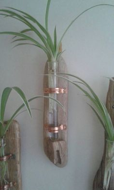 Driftwood Wall Vase for Single Flower Display with Copper Fittings - Glass Test Tube - Driftwood Art - Handmade by Adrift Crafts by AdriftCrafts on Etsy