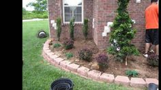 Landscape & Lawn Service ,425-492-5000 Tree, shrub, mulch, perennials, f...