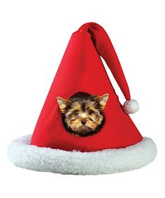 Santa Hat Pet Bed by Etna Products #zulily #zulilyfinds