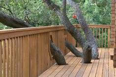 Build Your Deck Around A Tree
