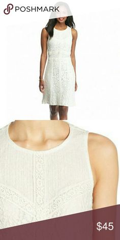Willow & Clay Lace Patchwork Dress Strips of small-scale lace trace the silhouette of a soft ivory shift dress, creating a tonal patchwork effect atop the chic look. Hidden back-zip closure Sleeveless  Lined 70% cotton, 30% nylon Jewel neck Willow & Clay Dresses