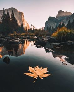 Seul avec la nature #yosemite #TopitoVoyage . Yosemite Park USA . : @erubes1 Fais comme Eric et utilise le hashtag #TopitoVoyage sur tes plus belles photos voyage . . . . . #vacances #visiting #trip #holiday #travel #yosemite #usa #lake
