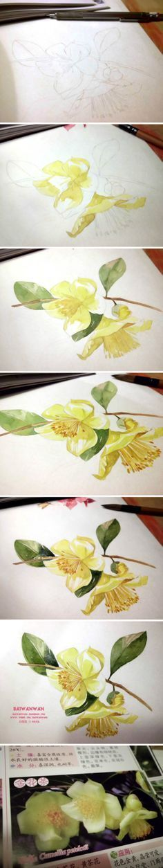 20 Delicate Colorful Watercolor Flower Painting Tutorials In Images-HOMESTHETICS (8)